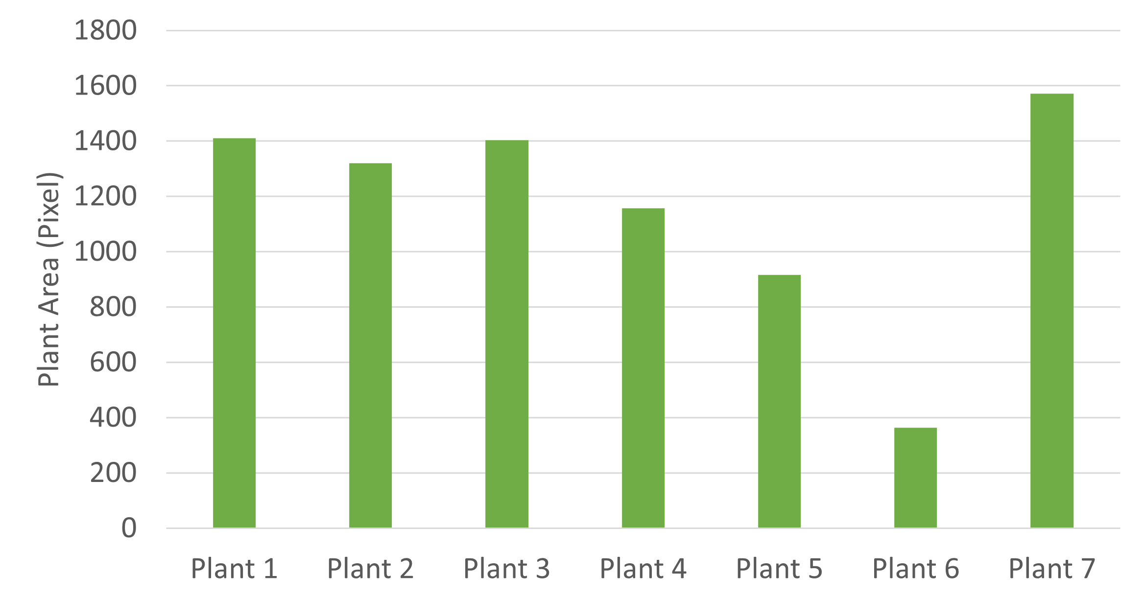 Seedling measurement