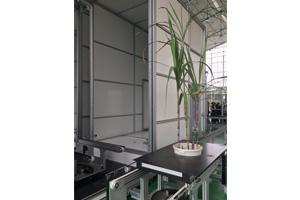 Conveyor Scanalyzer Imaging Cabinet
